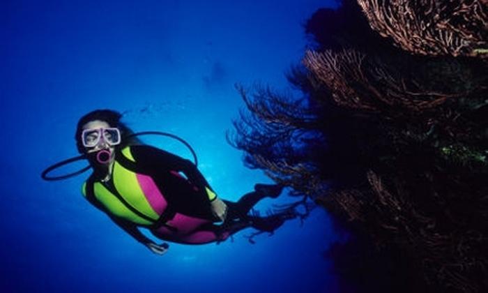 Aquatic Adventures of Michigan - Brighton: Scuba-Diving Classes at Aquatic Adventures of Michigan. Choose from Three Options.