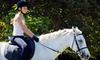 Half Off Horseback-Riding Lessons in Sun Prairie