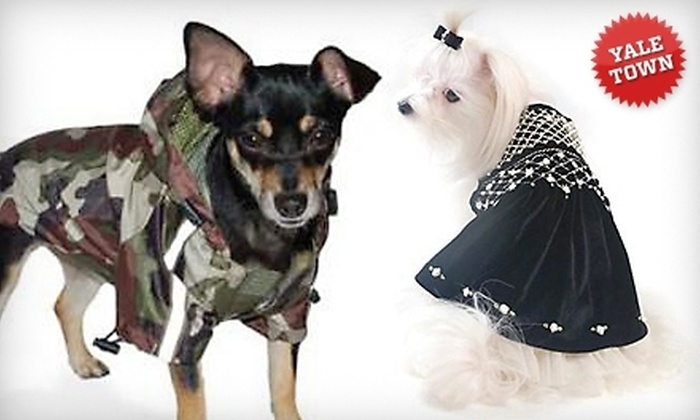 barking babies - Vancouver: $25 for $50 Worth of Doggy Apparel and Accessories at barking babies