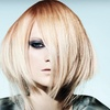 Up to 83% Off Aveda Haircare Package