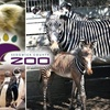 Up to 45% Off Sedgwick County Zoo