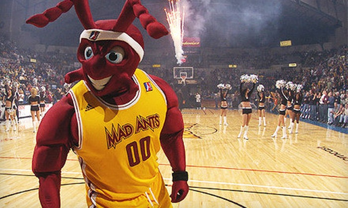 Fort Wayne Mad Ants - Fort Wayne: One Ticket to Fort Wayne Mad Ants Game at Allen County War Memorial Coliseum (Up to 60% Off). Two Options Available.