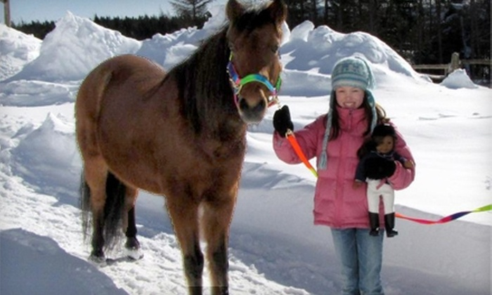 Embarr Stables - Goulds: $20 for Two Admissions to Children's Newfoundland Pony Pals Session and Ride at Embarr Stables ($40 Value)