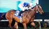 Evening Horse Racing at Colonial Downs Racetrack - New Kent: Horseracing with Betting, Tour, and Food Voucher for Two or Four at Colonial Downs Racetrack in New Kent (Up to 54% Off)