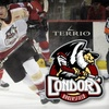 Up to 59% Off Condors Tickets