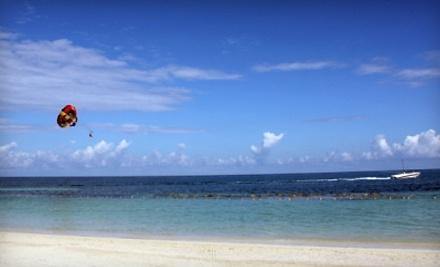 Adventures at Sea - Adventures at Sea in Panama City Beach