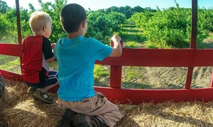 Smolak Farms: $13 for a Hay Ride for Four at Smolak Farms ($20 Value)
