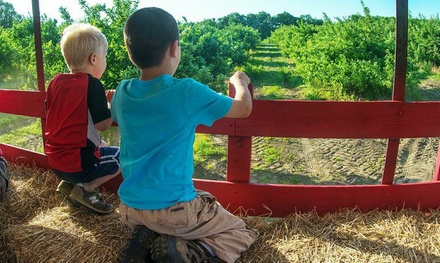 $13 for a Hay Ride for Four at Smolak Farms ($20 Value)
