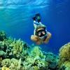 48% Off Snorkeling Equipment