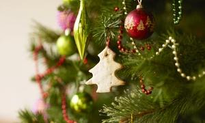 Nordmanniana: Sapin de Noël, modèle et taille au choix dès 13.90 € chez Nordmanniana