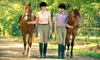 White Horse Equestrian - Streetsboro: $20 for Sunset Trail Ride for Two at White Horse Equestrian in Streetsboro (Up to a $40 Value)