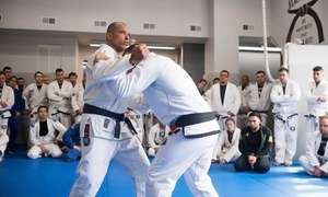 Redzovic Jiu-Jitsu Lincoln Park: 5 or 10 Jiu-Jitsu Classes at Redzovic Jiu-Jitsu Lincoln Park (Up to 82% Off)