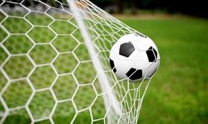 SportCentro: Affitto fino a 2 ore del campo da calcio a 5 o del campo da green volley