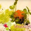 Half Off Pan-Asian Cuisine at Shabu-Ya