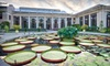 Longwood Gardens - Kennett Square: $9 for One-Day Admission to Longwood Gardens in Kennett Square (Up to $18 Value)