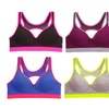Women's Open-Back Sports Bra 38D (6-Pack)