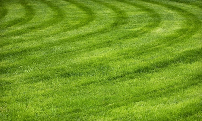 I M Lawn Care and Management - Downtown Jackson: One Lawn-Mowing Service or Two Services with Weed-Killer Sprays from I M Lawn Care and Management (Up to 75% Off)