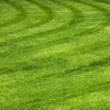 Up to 75% Off Lawn-Care Services