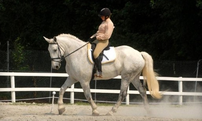 Countyline Equestrian Center - Louisburg : One or Four Private Lessons or One Group Lesson for Two at Countyline Equestrian Center in Louisburg (Up to 62% Off)
