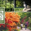 51% Off Botanical Garden Membership