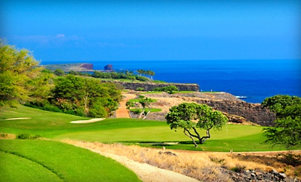 Good for an 18-Hole Golf Lesson for One Person ($175 Value) - Executive Links in