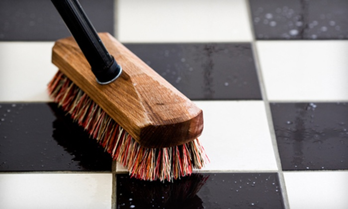 Trust Cleaning Services - Brookline Village: Two or Three Hours of Housecleaning from Trust Cleaning Services