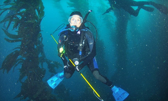 Ye Ol' Dive Shop of Simi Valley - Simi Valley: Discover Scuba Course, Nitrox Course, or Complete Diver Workshop at Ye Ol' Dive Shop of Simi Valley (Up to 75% Off)