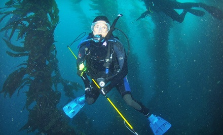 Discovery Scuba Dive Course (a $100 value) - Ye Ol' Dive Shop of Simi Valley in Simi Valley