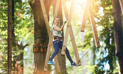 Treetop Aerial Course for One, Two or Four at Arbre en arbre Havelock (Up to 54% Off)