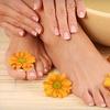 54% Off Shellac Manicure or Mani-Pedi