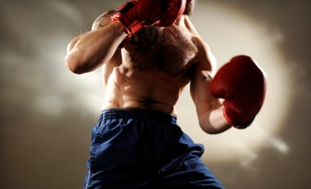 High Performance Mixed Martial Arts - High Performance Mixed Martial Arts in Lakeland