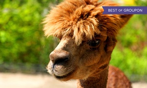 Florida's Adventures in Paradise: Entry for 1, 2, or 4 to Wildlife Refuge, Petting Zoo, and Fish Ponds at Florida's Adventures in Paradise (Up to 82% Off)