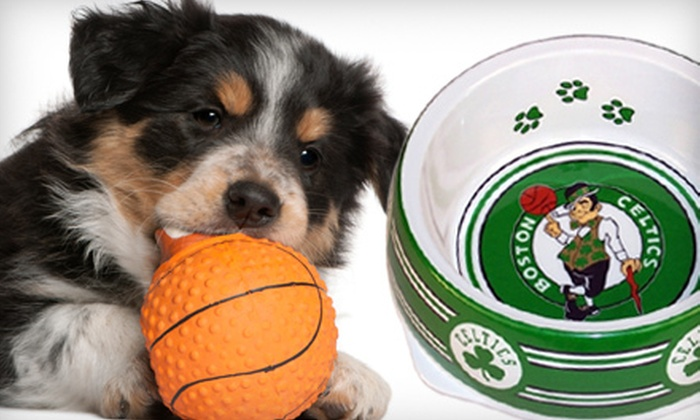 DoggieNation: $20 for $40 Worth of Canine Sports Apparel and Accessories from DoggieNation