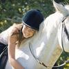 Up to 59% Off Horseback Riding in Goldsboro