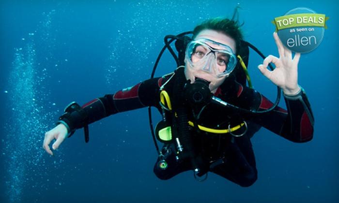 Splash Dive Center - Seminary Hill: Beginners' or PADI-Certification Scuba Class at Splash Dive Center (Up to Half Off)