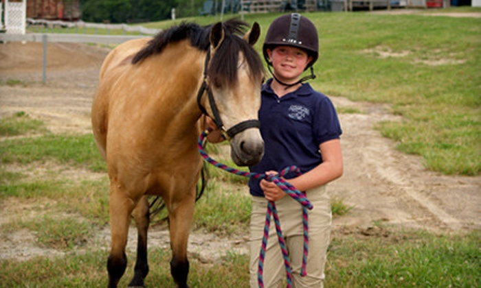 Shenanigans Farm - Addison: $55 for a Pony Princess Package with Two Riding Lessons and One Horsemanship Lesson from Shenanigans Farm ($120 Value)