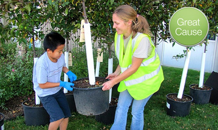 Tree Trust - Eliot View: If 65 People Donate $10, Then Tree Trust Can Plant 10 Mature Trees in the Metro Area. Donations Matched.