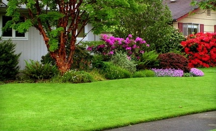 Razor's Edge Lawn Care: $60 Groupon for Lawn-Care Services - Razor's Edge Lawn Care in