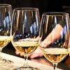 Half Off Tasting at Wine Cellars of Mount Dora