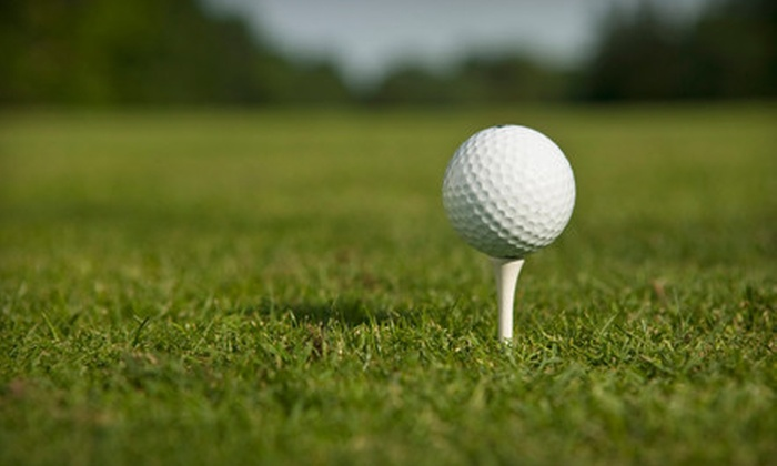 Rolling Oaks Golf Club - Northeast San Antonio: Large Bucket of Range Balls and Burger Meal or 15 Large Buckets of Range Balls at Rolling Oaks Golf Club (Up to Half Off)