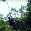 52% Off at Eco Zipline Tours in New Florence
