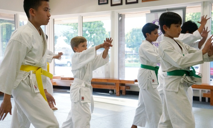 Orange County Aikido - Orange: One or Three Months of Unlimited Aikido Classes at Orange County Aikido (55% Off)