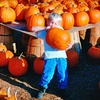 Half Off Fall Activities at The Pumpkin Patch
