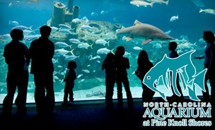 North Carolina Aquarium at Pine Knoll Shores: 1 Child Admission - North Carolina Aquarium at Pine Knoll Shores in Pine Knoll Shores