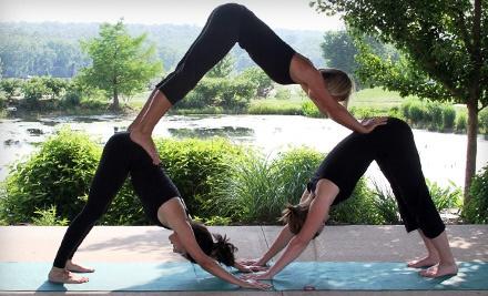 Element Yoga and Health Studio - Element Yoga and Health Studio in Columbia