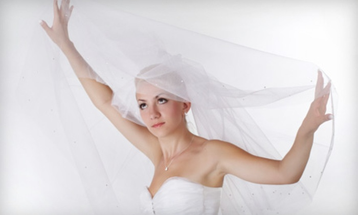 Zenith Dry Cleaners - Denton: Wedding-Gown Preparation Service, Wedding-Gown Preservation, or Both at Zenith Dry Cleaners in Denton