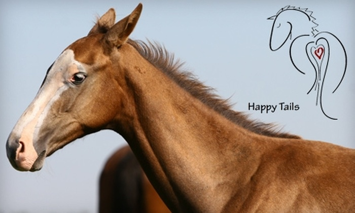 Happy Tails - 6: $25 for Two Horseback-Riding Lessons at Happy Tails Equine Activities
