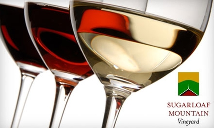 Sugarloaf Mountain Vineyard - Washington DC: $25 for a Wine Tasting for Two, Cheese Platter, and Two Glasses of Wine at Sugarloaf Mountain Vineyard in Dickerson (Up to $54 Value)