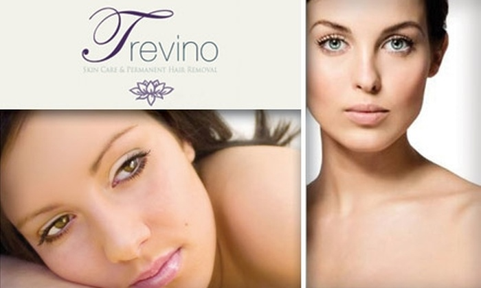 Trevino Skin Care - Central Business District: $30 for a One-Hour Electrolysis Treatment at Trevino Skin Care ($66 Value)