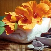 Up to 63% Off Spa Package in Downers Grove